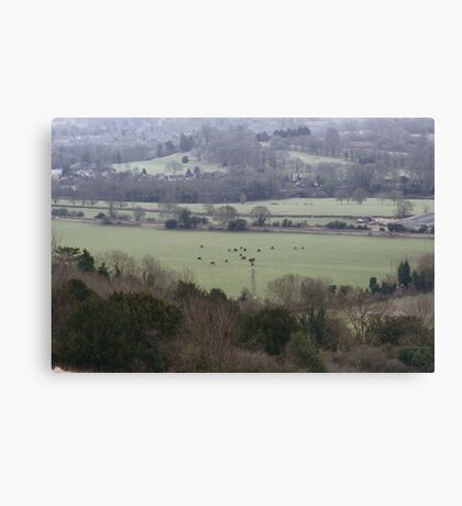 Countryside Shapes Canvas Print