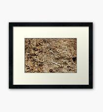 Human Remains Framed Print