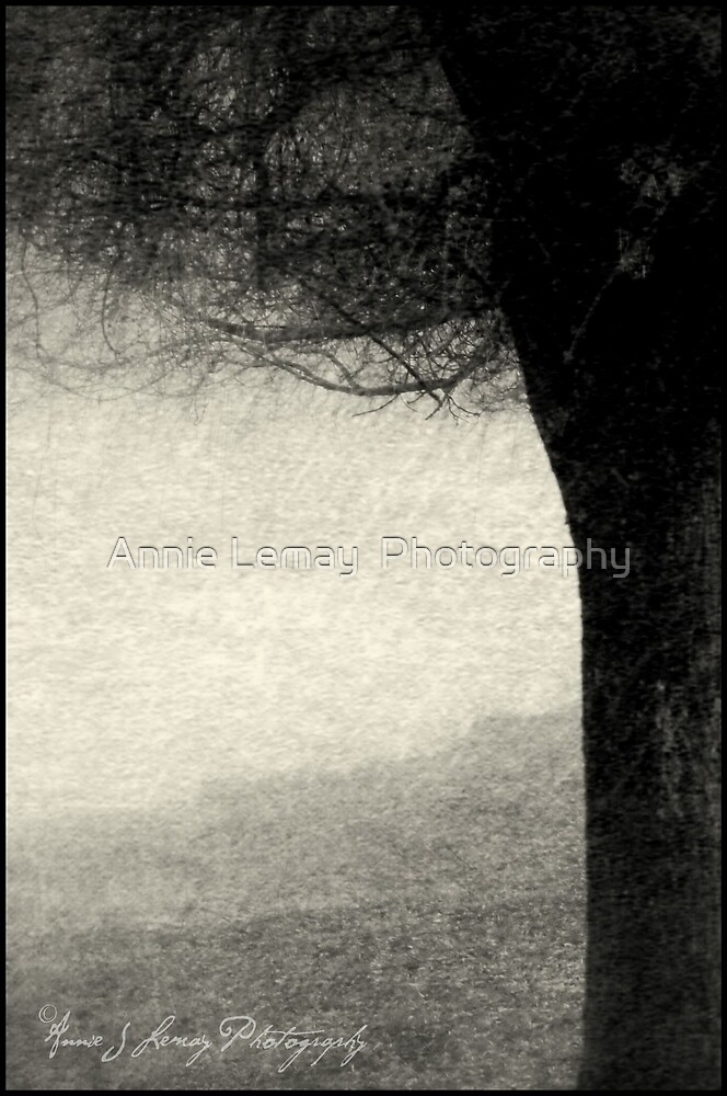 Single by Annie Lemay  Photography