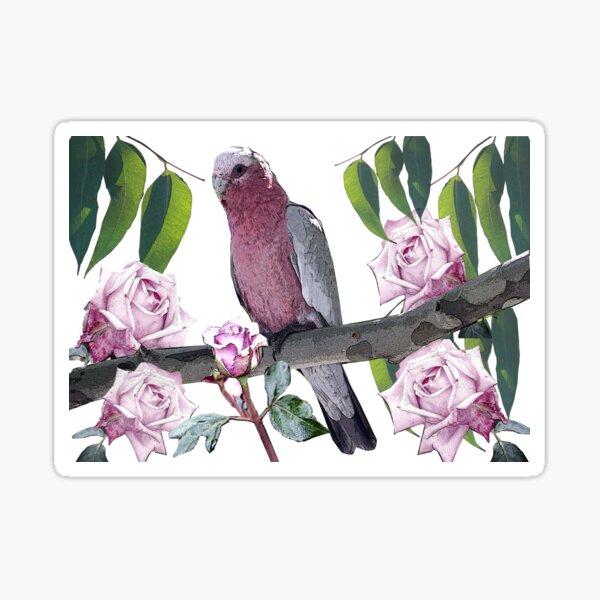 Galah in the Garden Sticker
