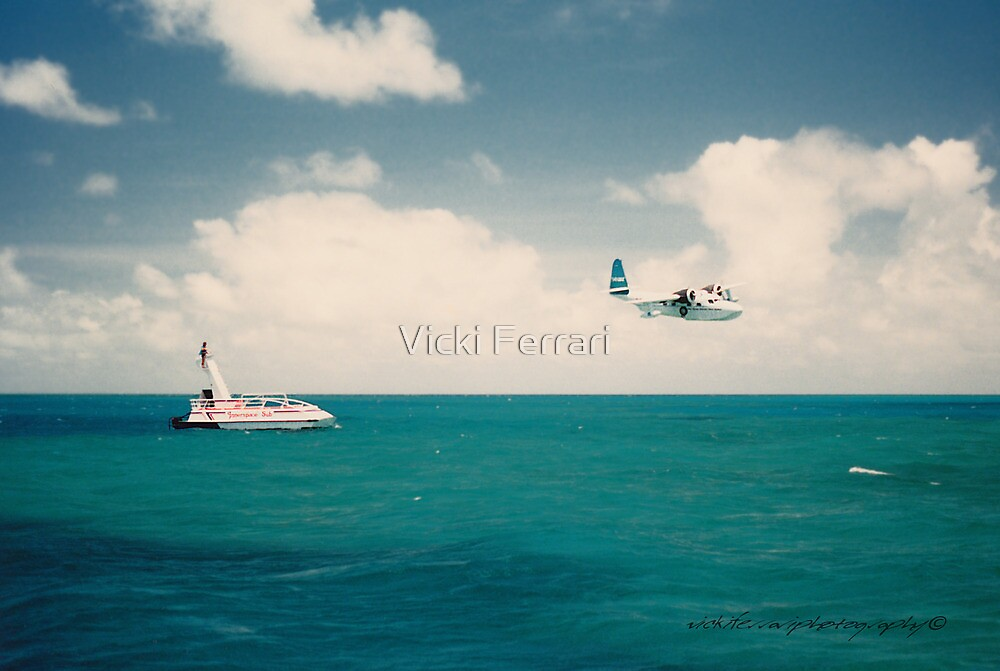 Traffic On The Great Barrier Reef © Vicki Ferrari by Vicki Ferrari