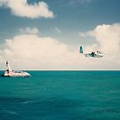 Traffic On The Great Barrier Reef © Vicki Ferrari by Vicki Ferrari