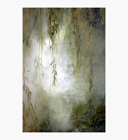 Weepin Willows Photographic Print