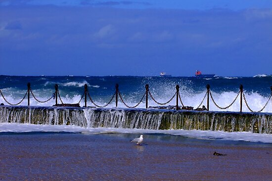 Newcastle Ocean Baths by Gabrielle  Lees