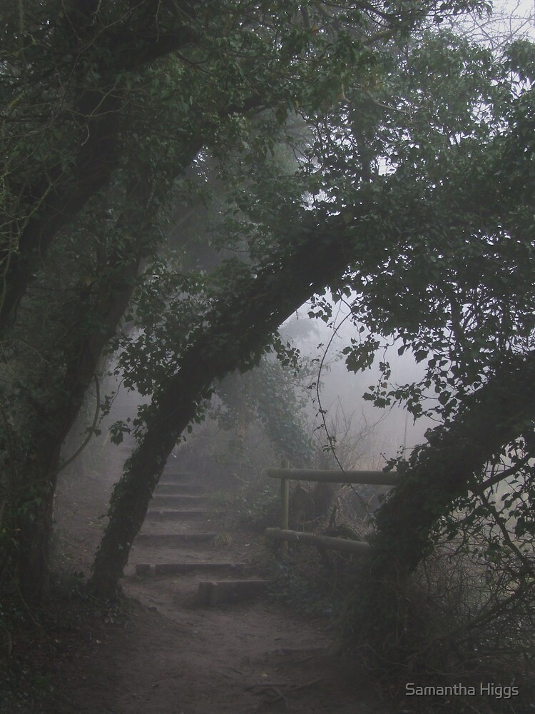 Mysterious Path by Samantha Higgs