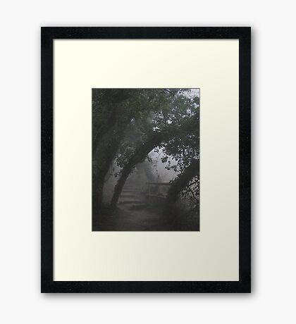 Mysterious Path Framed Print
