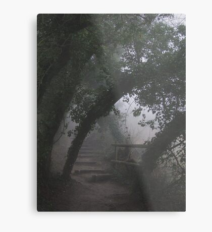 Mysterious Path Metal Print