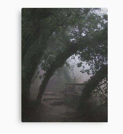 Mysterious Path Canvas Print