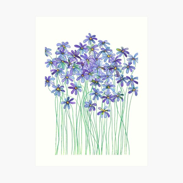 Purple Daisies in Watercolor & Colored Pencil  Art Print