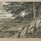 Rocky Shore. Muskoka River. by Guennadi Kalinine