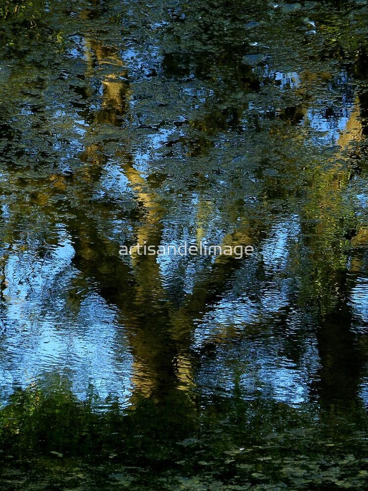 Nature's Mirror ~ Part Three by artisandelimage