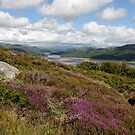 Mawddach Estuary View by Simon Hickie