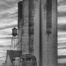 Great Western Sugar Mill Longmont Colorado BW by Bo Insogna