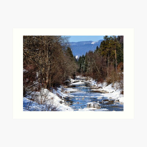 germany, winter brook Art Print