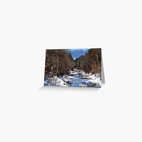 germany, winter brook Greeting Card