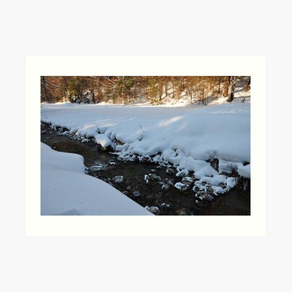 germany, winter brook 2 Art Print