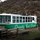 A Cruise Down The Donnelly River by Eve Parry