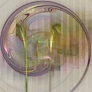 Spiral Flame #1 by Lois Bennett