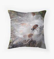 Milkweed Bug on Milkweed Tuft Throw Pillow