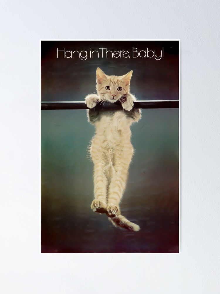 Alternate view of Hang in there Poster