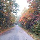 long road by DougOlsen