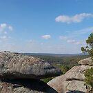 Forest Boulders by DougOlsen
