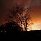Evening Fire Sunset by Peter Barrett