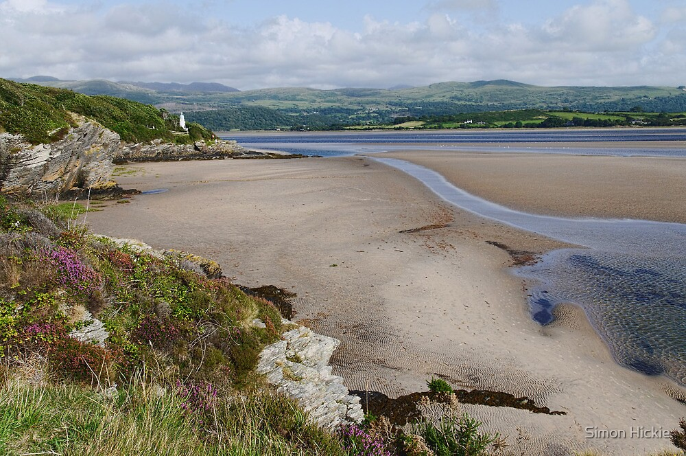 Coast at Portmeirion by Simon Hickie