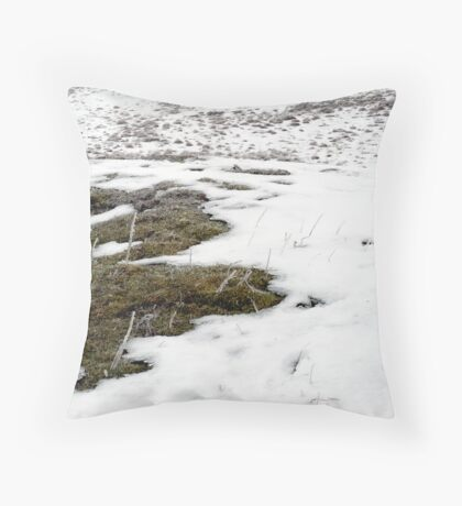 untitled #150 Throw Pillow