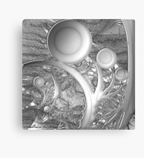 Seeing Everything in Black and White Canvas Print