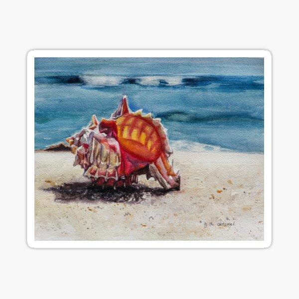 Murex Shell on the Beach Sticker