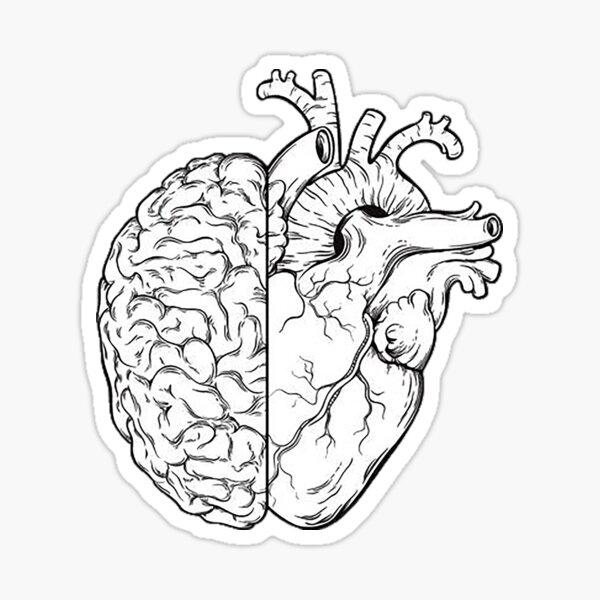mitad cerebro mitad corazón Pegatina