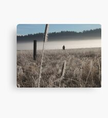Morning hunt Canvas Print