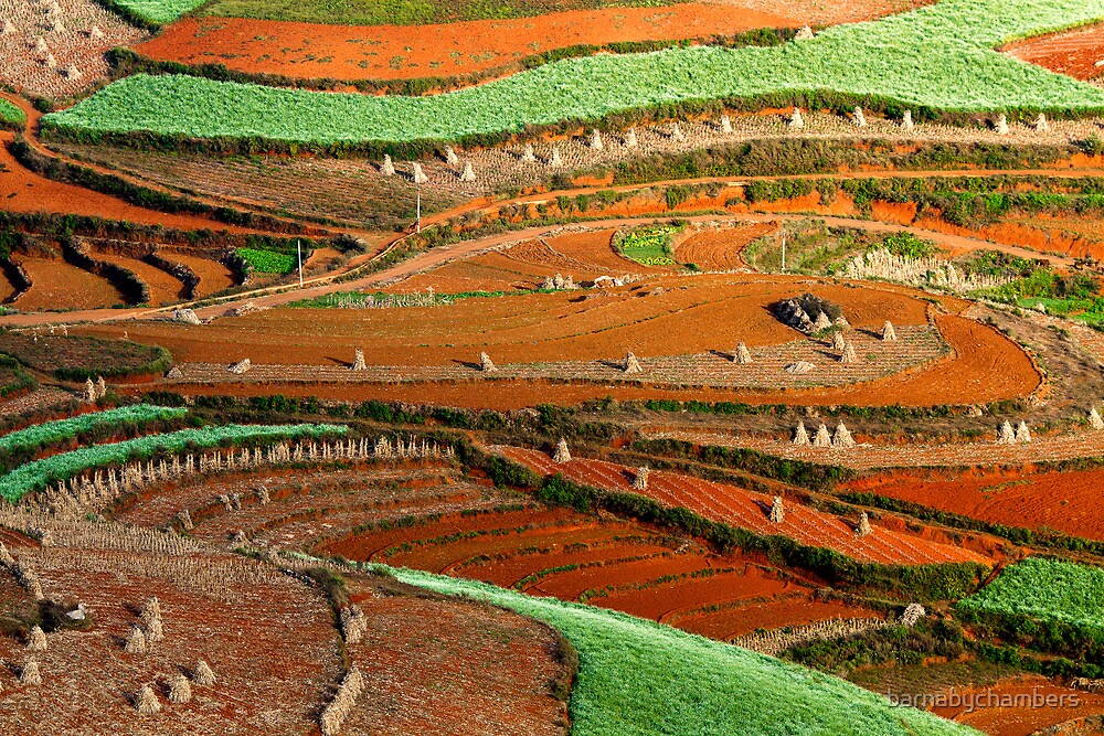 Patterns at Dongchuan by barnabychambers