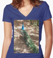 Peacock Beauty Fitted V-Neck T-Shirt