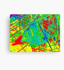 Colour Mad 1 Canvas Print