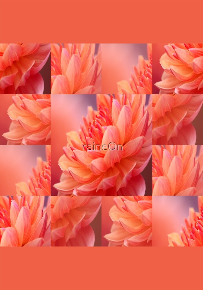 Touch Of Orange Flower Poster by raineOn