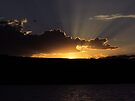 Goodnight Lights  (please view larger~!) by Brenda Dahl