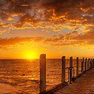 Safety Beach 36fr-HDR by Sam Sneddon