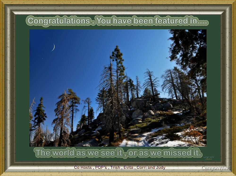 High Country roads banner by CanyonWind