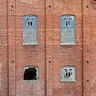 Brick Wall Broken Windows by Bo Insogna