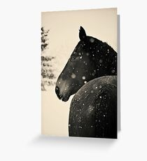 Black Horse VS. Snow Storm Greeting Card