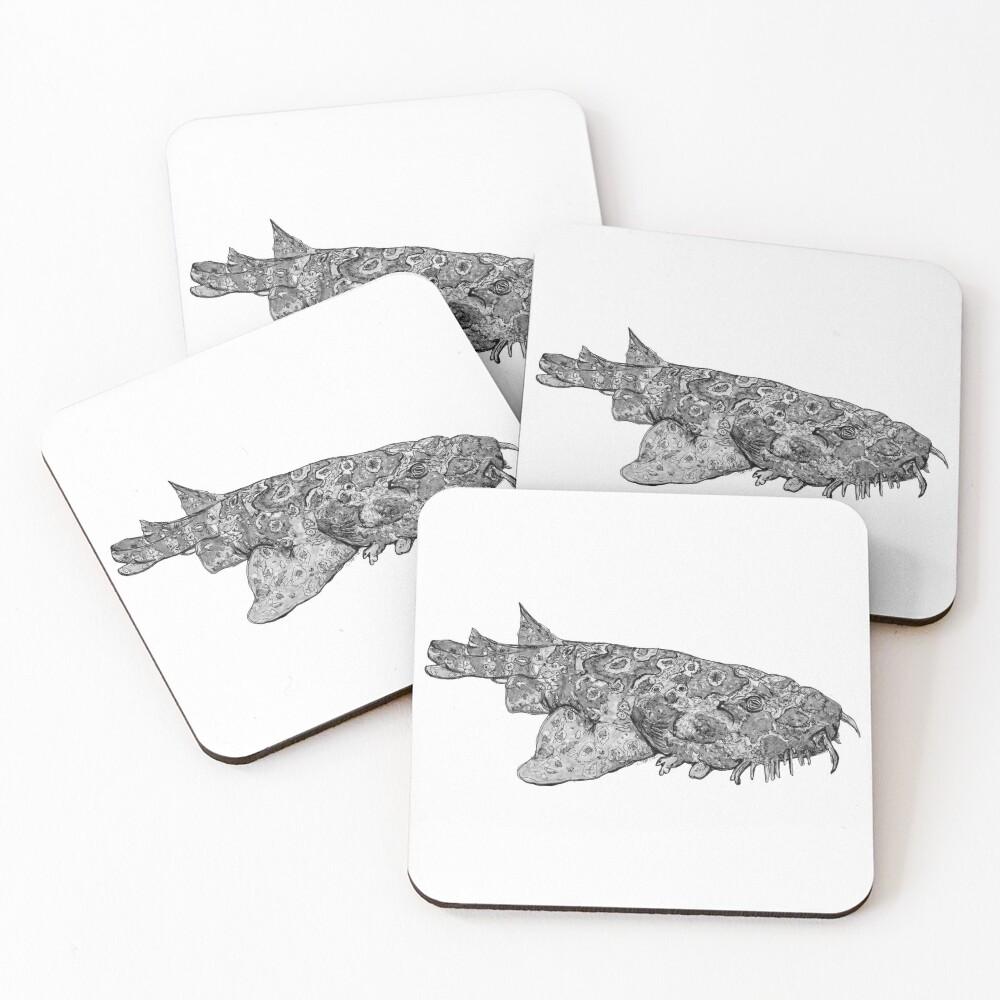 Penelope the Wobbygong Shark Coasters (Set of 4)