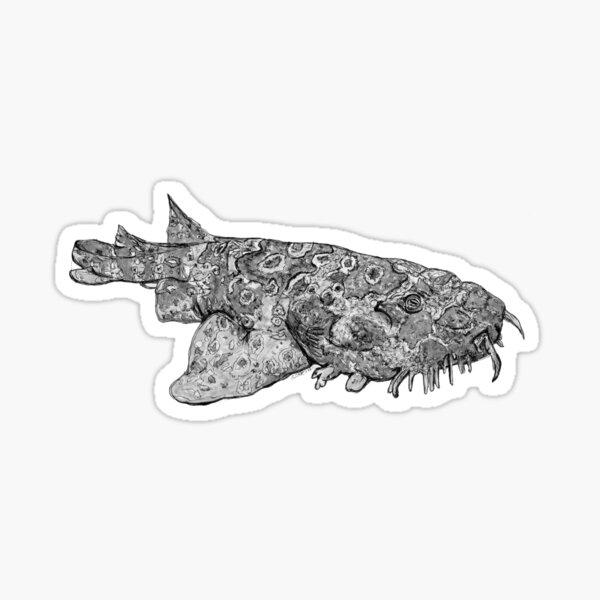Penelope the Wobbygong Shark Sticker