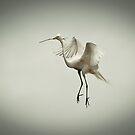 In Love & Walking On Air by Joe Jennelle