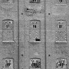 Sugar Mill Broken Windows BW by Bo Insogna