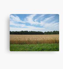Roadside Wheat field  Canvas Print