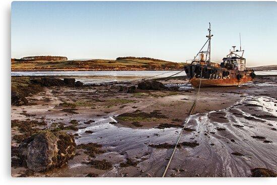 Ross Bay Dawn by derekbeattie