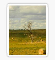 Dead Wood in  North Dakota Sticker