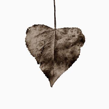 Love Leaf by kordis